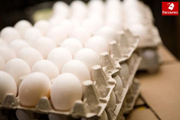 تخممرغ ارزان میشود