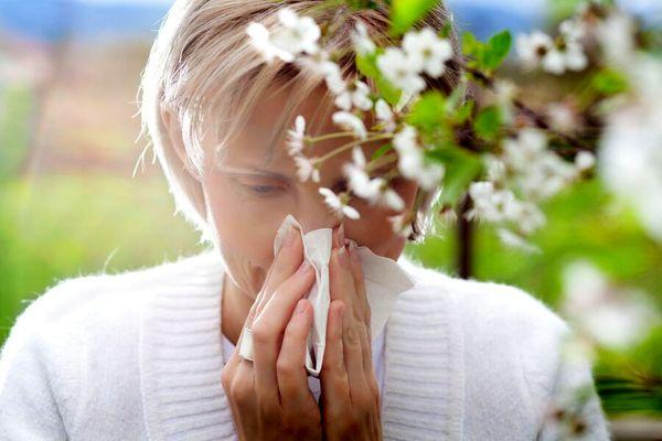 بهترین راه درمان آلرژی فصل بهار