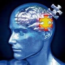 کم خوابی موجب آلزایمر می شود یا پرخوابی؟
