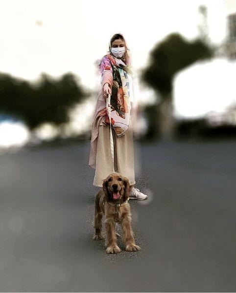 پیاده روی ماهور الوند با سگش + عکس