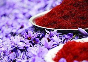 صادرات زعفران به آمریکا متوقف می شود