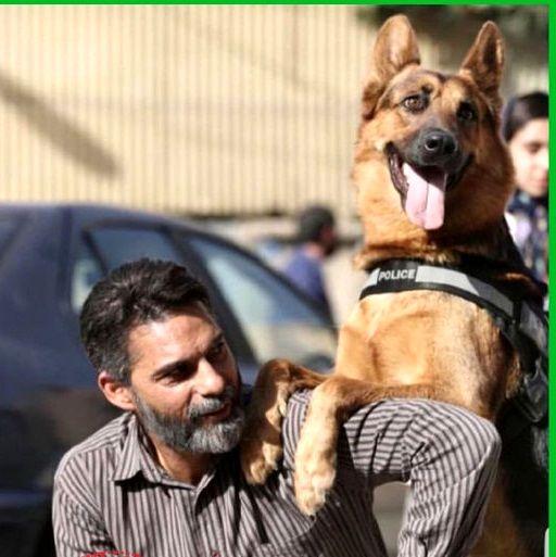عکس دوستانه پیمان معادی با سگ غول پیکر