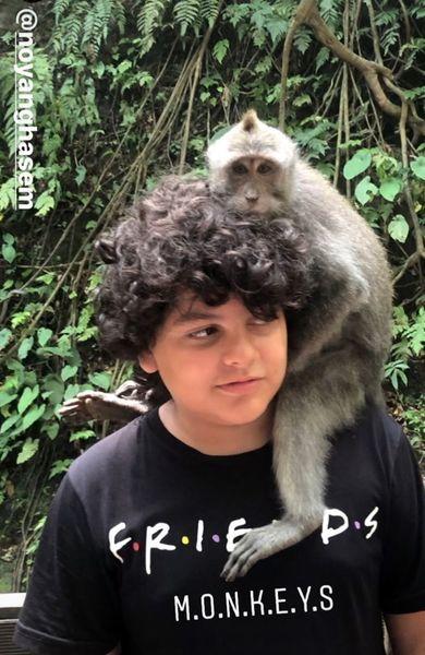 میمون بازی پسر شقایق دهقان+عکس