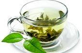 تولید عصاره ضد سرطان از چای سبز