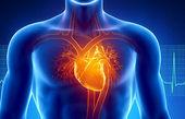 ۷ عاملی که بیماریهای قلبی را به جانتان میاندازد
