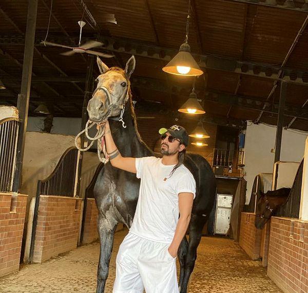 اسب زیبای امیرعباس گلاب + عکس