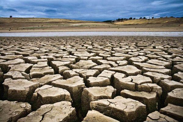 کرمان، بحرانیترین دشت آبی کشور