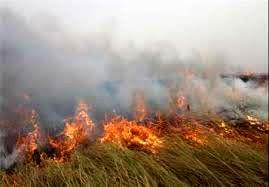 ادامه آتشسوزی در هورالعظیم