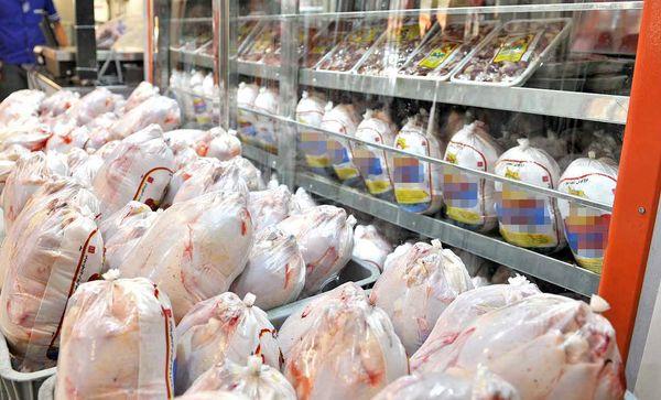قیمت مرغ کامل تازه در بازار