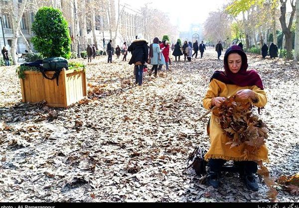 صحنههای جنگ مار و لکلک که دیگر تهرانیها نمیبینند