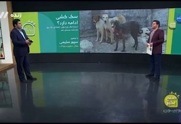 اعتراض بازیگر دلدادگان به شهرداری