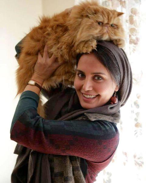سرگرمی های «الناز شاکردوست» با گربه اش