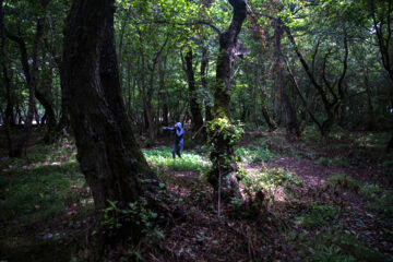 «پریماه افرار» در جنگل های مازندران تمرین می کند