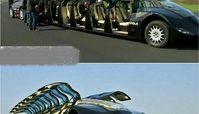 ماشین شیخ عرب با قابلیت حمل 23نفر