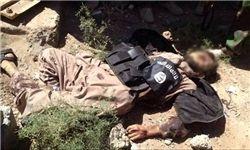 داعشیها در دیرالزور به جان هم افتادند