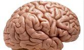 ورزش مغز را از خطر ابتلا به بیماری آلزایمر دور نگه می دارد