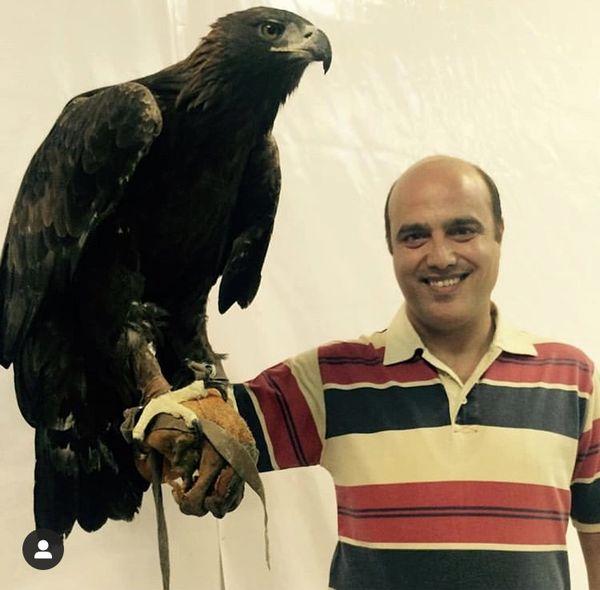عقاب جذاب سعید داخ + عکس