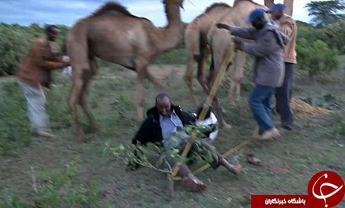 گزارش دیدنی خبرنگار از دربی شتر+فیلم