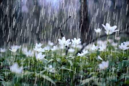 بارش های رگباری باران در کرمان ادامه دارد
