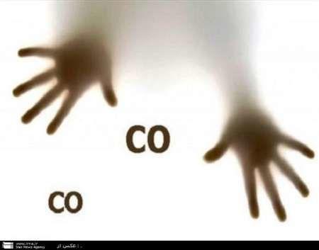 گازگرفتگی علائمی شبیه آنفلوانزا دارد