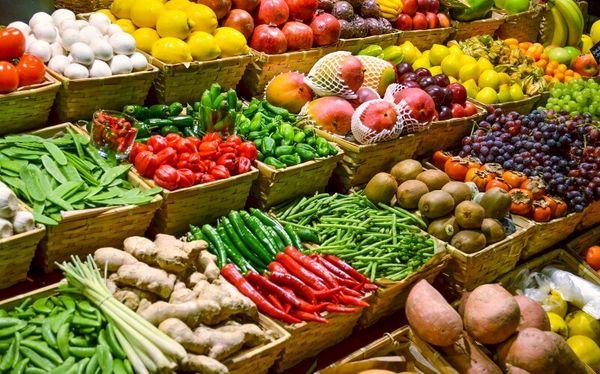 صادرکنندگان محصولات کشاورزی بدون یارانه دولتی راه خود را در بازارهای هدف بازکردند
