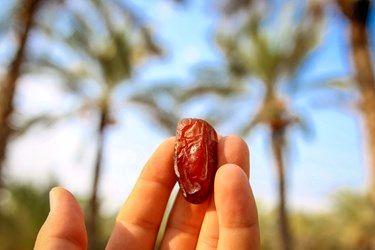 رطب میوه ای بهشتی که قبل از خرما برداشت میشود و در ایام تابستان با ماست بسیار خوشمزه می باشد