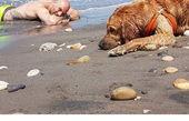 تفریح احسان روزبهانی لب دریا با سگ گنده اش+عکس