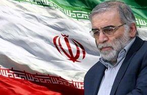 توصیه رهبرانقلاب درباره حفاظت شهید فخری زاده