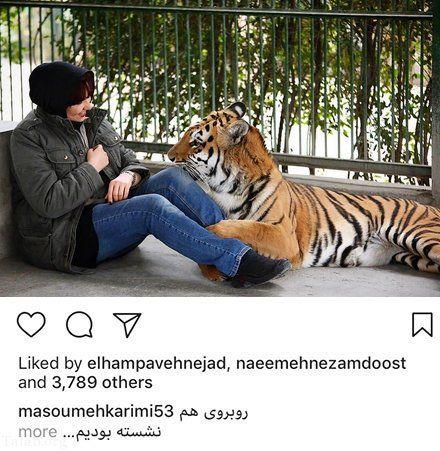 بازی خانم بازیگر با ببر عظیم الجثه+عکس
