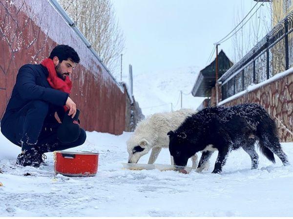 غذا دادن آقای بازیگر به سگها در هوای برفی + عکس