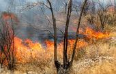 """مرگ 3 نفر در جریان اطفای آتش """"بوزین و مرهخیل"""""""