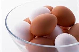 تفاوت تخم مرغهای قهوهای با سفید