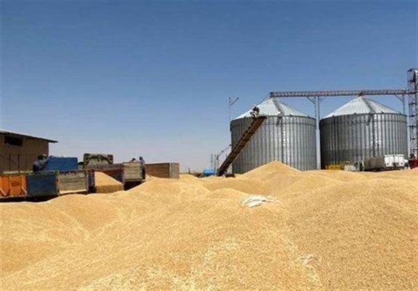 زنجان ظرفیتی بیش از 500 هزار تن ذخیره سازی گندم در 26 سیلو را دارد