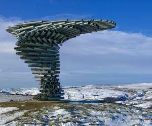 درخت آوازه خوان ؛ خوش صداترین سازه ی دنیا