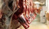 افزایش قیمت گوشت قرمز