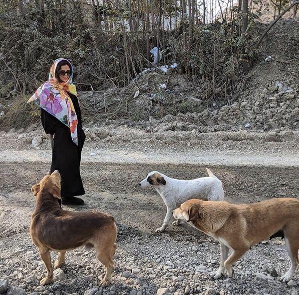بازی کردن ماهور الوند با سگ های خیابانی + عکس