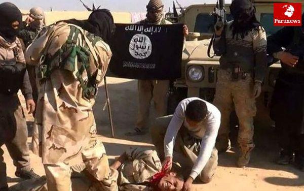 كار ويژههاي داعش و ائتلاف ضد آن
