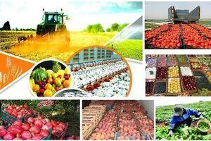 نارضایتی مردم از گرانی محصولات کشاورزی