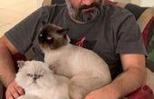مهراب قاسم خانی و گربه هایش + عکس