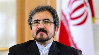 توضیحات قاسمی درباره بازداشت استاد ایرانی در دانمارک