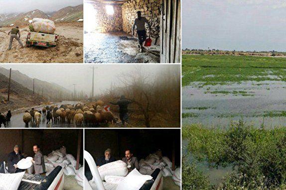 جزئیات میزان خسارت سیل و نحوه جبران آن در بخش کشاورزی کشور