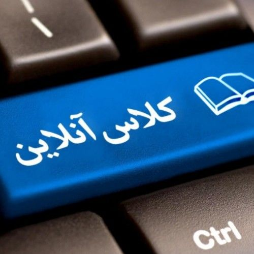 کلاس آنلاین در محاصره گله بزها!+ عکس